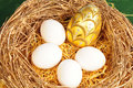 Free Easter Egg Royalty Free Stock Photos - 8729308