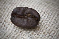 Free Coffee Bean Royalty Free Stock Photo - 8720115