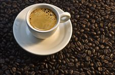 Free Coffee Stock Images - 8720244