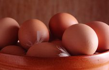 Free Eggs Stock Images - 8721084