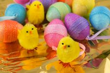 Free Easter Chicks With Eggs Stock Photography - 8721172