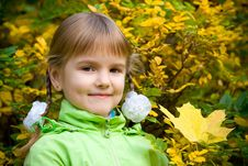 Free Little Girl In Autumn Park Royalty Free Stock Image - 8722636