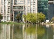 Free Building Tree Pond Stock Photography - 8724972