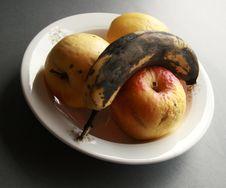 Free Bad Fruit Royalty Free Stock Images - 8725389