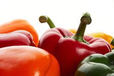 Free Peppers On White Stock Photo - 8726770