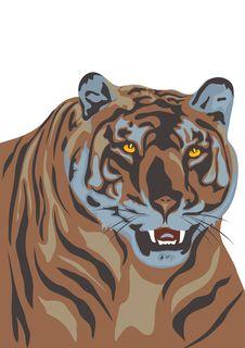 Free Tiger Royalty Free Stock Photos - 8728298