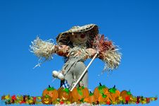 Free Pumpkin Patch With Scarecrow Guard Royalty Free Stock Photos - 8728688