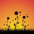 Free Summer Sunset Background Royalty Free Stock Photo - 8735785