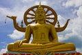 Free Big Buddha Stock Images - 8736944