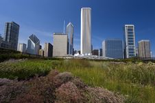 Prairie In The Middle Of Downtown Stock Photos