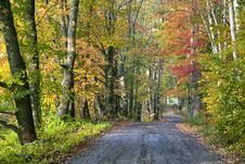 Free Fall Color Along Road In Sugar Hill Royalty Free Stock Photography - 8732177