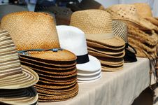 Free Sunhats Royalty Free Stock Photography - 8732527