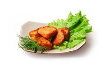 Free Fried Meat With Salad And Dill Stock Photo - 8732880