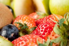 Free Assorted Fresh Fruits Background Stock Images - 8732984