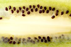 Free Sliced Ripe Kiwi Royalty Free Stock Photo - 8733025