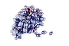 Free Ripe Grape Isolated Royalty Free Stock Photo - 8733035