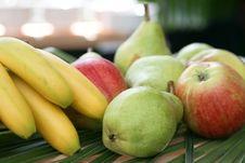 Free Fruits Stock Image - 8733481