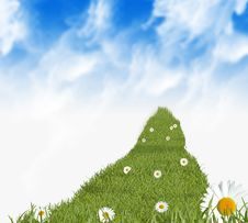Free Grass Path And Daisies Stock Photo - 8734730