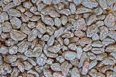 Free Juicy Raisins Stock Photography - 8735152