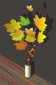 Free Autumn Stock Image - 8736211