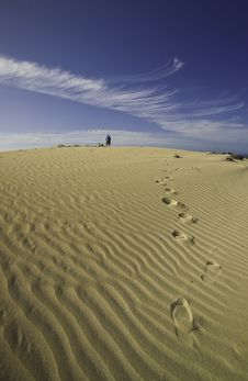 Free Footprints In The Sand Royalty Free Stock Photo - 8737925