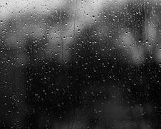 Free Rainy November Stock Photos - 87311683
