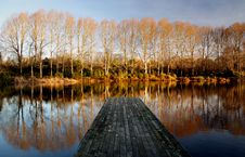 Free Lakes At The Groynes.Christchurch. Stock Photo - 87311820