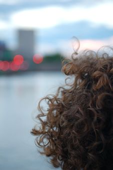 Free Curls At Dusk Royalty Free Stock Images - 87312549