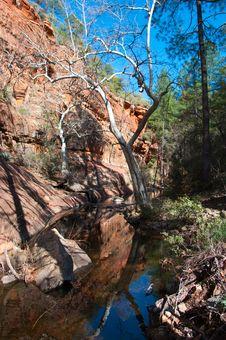 Free Secret Canyon Trail Royalty Free Stock Photo - 87313655