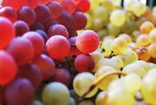 Free Macro Shot Photography Of Green And Red Grapes Royalty Free Stock Images - 87317359