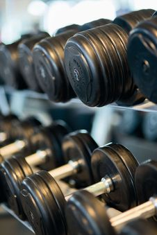 Free Dumbbells On Rack Royalty Free Stock Images - 87319179