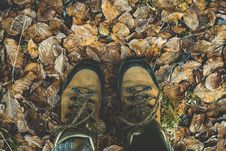 Free Low Section Of Man Standing On Autumn Leaves Stock Image - 87319961