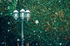 Free Streetlamp In Snow Royalty Free Stock Photography - 87320457