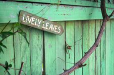 Free Lively Leaves Stock Image - 87380411