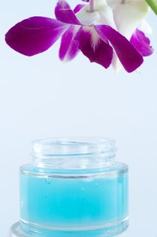 Free Orchid With Cream Pot Stock Image - 8741101
