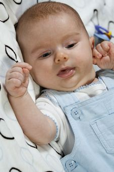 Free Portrait Of Young Baby Boy Royalty Free Stock Photography - 8742067