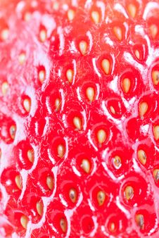 Free Strawberry Isolated On White Royalty Free Stock Photography - 8743367