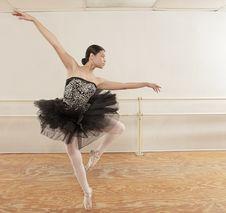 Free Ballet Dancer Royalty Free Stock Photos - 8743438