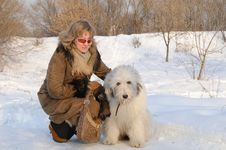 Woman And Puppy South Russian Sheep Dog Royalty Free Stock Photo