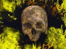 Free Burning Skull Royalty Free Stock Images - 8745799