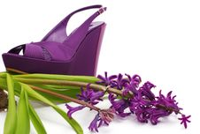 Free Purple Platform Shoe With Flower Close-up Royalty Free Stock Photos - 8746548