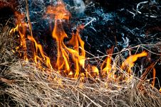 Free Burning Grass Stock Image - 8747691