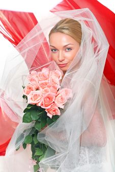 Free Bride Royalty Free Stock Photography - 8748107