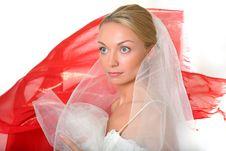 Free Bride Stock Photos - 8748243