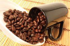 Free Coffee Grains Stock Photography - 8749332
