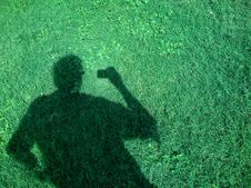 Free The Green Shadow Royalty Free Stock Photography - 87433227