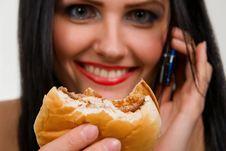Free Tasteful Sandwich Royalty Free Stock Photo - 8753835