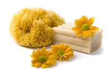 Free Natural Sponge, Soap And Flowers Stock Photo - 8755240