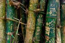 Free Signs On Bamboo Stock Photography - 8758682