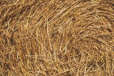 Free Brown Hay Stock Photos - 87503263